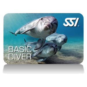 Basic-Diver